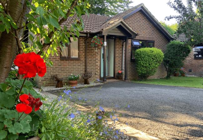Judy's clinic